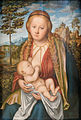 The Virgin suckling the Child - Lucas Cranach the Elder.jpg
