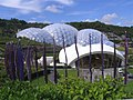 The arena at the Eden Project - geograph.org.uk - 1777983.jpg