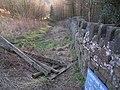 The bridleway near Randy Mere - geograph.org.uk - 329068.jpg