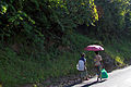 The pink umbrella (5826120134).jpg