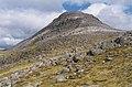 The summit of Beinn Liath Mhor - geograph.org.uk - 505081.jpg