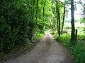 The track to Worthington - geograph.org.uk - 1341604.jpg