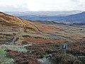 The water board track above Braefordie - geograph.org.uk - 703145.jpg