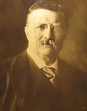 portrait of Theodore Roosevelt from 1904, Orotone process by Edward Sheriff Curtis