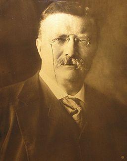 Theodore Roosevelt Orotone