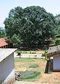 Thrissilery Siva Temple4.jpg