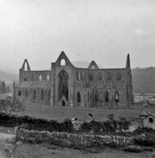 an interpretation of lines 41 60 of tintern abbey a poem by william wordsworth The ode reveals wordsworth's understanding of psychological development that is also found in his poems the prelude and tintern abbey wordsworth's praise of the child as the best in his analysis of the poem after quoting the final lines of the ode: intimations of immortality.