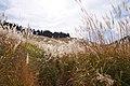 Tonomine highland Kamikawa Hyogo pref Japan09n.jpg