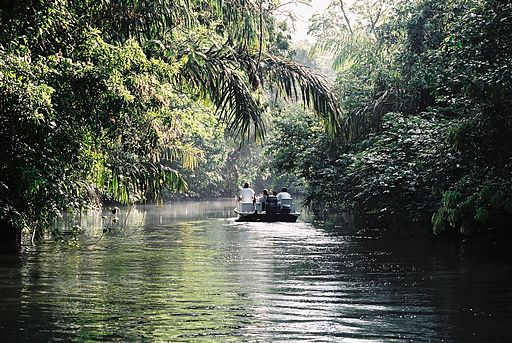 Tortuguero boat trip Places to Visit in Costa Rica