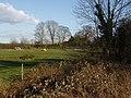 Towards Blue Tile Farm - geograph.org.uk - 355350.jpg
