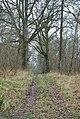 Track across Brickles Wood - geograph.org.uk - 642187.jpg