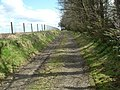 Track east of Middlemuir - geograph.org.uk - 773558.jpg