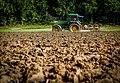 Tractor in a field.jpg