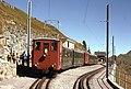 Trains du Schynige Platte (Suisse) (4434942958).jpg