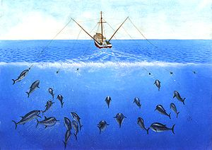 A drawing of a fishing boat using outriggers to tow multiple trolling lines
