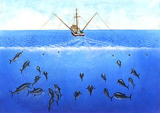Trolling (fishing) The practice of fishing by drawing a baited line or lure behind a boat
