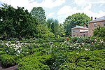 Tudor Place flower garden 2011 4.jpg
