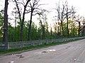 Turbiv park 158.jpg