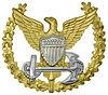 Coast Guard Command Ashore Pin