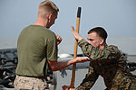USS Mesa Verde (LPD 19) 140426-N-BD629-220 (14081507734).jpg