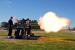 Image of a 21 gun salute at a military funeral.