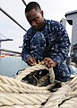 US Navy 111203-N-WJ771-079 Seaman Apprentice Luis Silva repairs a Kevlar mooring line on the forecastle of the forward-deployed amphibious dock lan.jpg