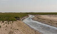 Uniek door eb en vloed steeds wisselend kweldergebied. Locatie, Noarderleech Provincie Friesland 005.jpg