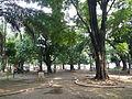 UniversidaddeManilajf4512 06.JPG