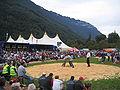 Unspunnenfest Interlaken 2006 Schwingen.jpg
