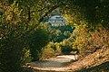 Upper Arroyo Park, Arroyo Seco, Pasadena, CA 01.jpg