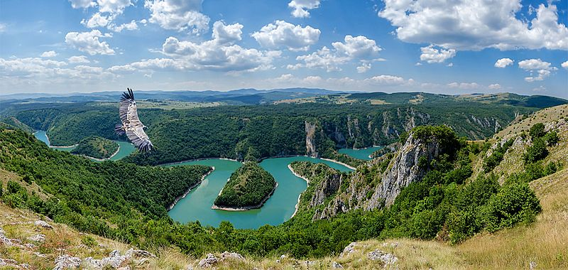 File:Uvac River and Eagle.jpg