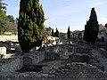 Vaison Roman ruins - panoramio (26).jpg