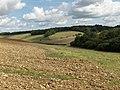 Valley near Eastbury - geograph.org.uk - 230199.jpg