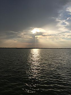 Veeranam Lake Sunset.jpg