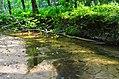 Verkės upelis.JPG