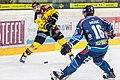 Vienna Capitals vs Fehervar AV19 -80.jpg