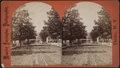 View of a commercial street, from Robert N. Dennis collection of stereoscopic views.png