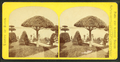 View of a garden with topiary work, by Seaver, C. (Charles) 2.png