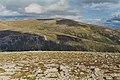 View towards Beinn a' Bhuird from Beinn Bhreac - geograph.org.uk - 760974.jpg