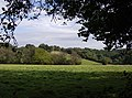 View towards Witheridge Hill - geograph.org.uk - 595746.jpg