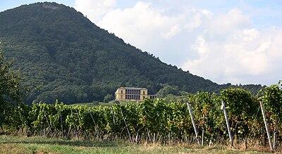 Villa Ludwigshoehe03.jpg