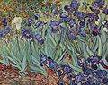 Vincent Willem van Gogh 126.jpg