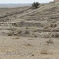 Visit Tel Arad 29.jpg