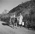 Vrouw en kind met ezel op Boniare terug van de bron, Bestanddeelnr 252-8368.jpg