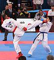 WKF-Karate-World-Championships 2012 Paris 545.JPG
