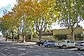 Wagga Wagga Commercial Club.jpg