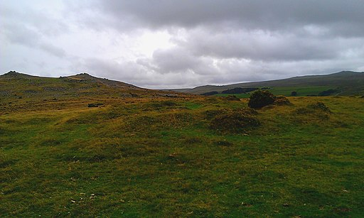 Watchet Hill tumulus, with Belstone Tor in background