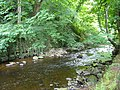 Water of Leith, Colinton Dell - geograph.org.uk - 1407482.jpg