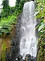 Waterfall in the Tropical Biome at Eden - geograph.org.uk - 1240271.jpg
