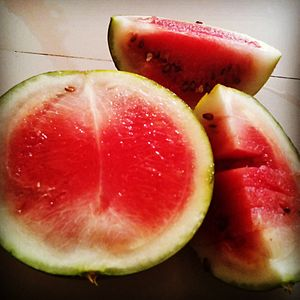 Watermelon for Refreshment.jpg